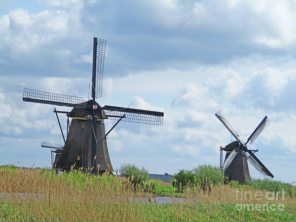 Wall Art - Photograph - Dutch Windmills 35 by Randall Weidner