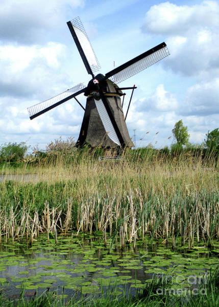 Wall Art - Photograph - Dutch Windmills 37 by Randall Weidner
