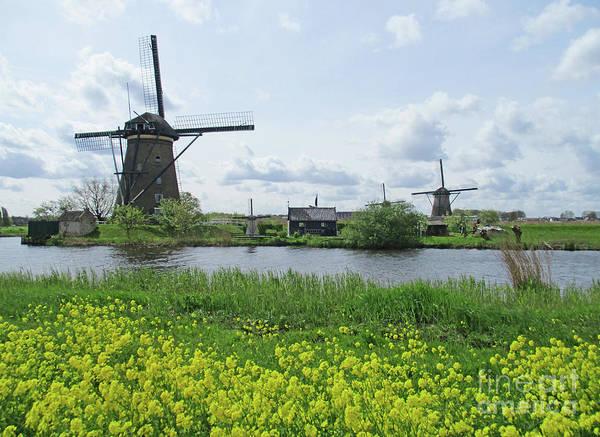 Wall Art - Photograph - Dutch Windmills 40 by Randall Weidner
