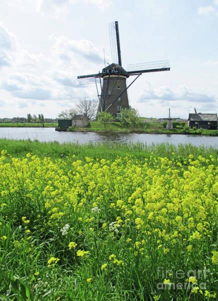 Wall Art - Photograph - Dutch Windmills 41 by Randall Weidner