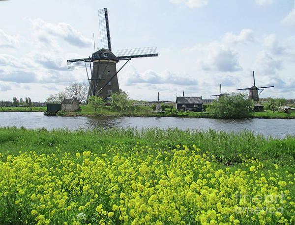 Wall Art - Photograph - Dutch Windmills 42 by Randall Weidner