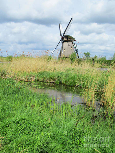 Wall Art - Photograph - Dutch Windmills 62 by Randall Weidner