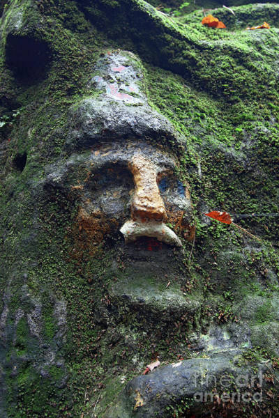 Wall Art - Photograph - Dwarf Covered By Moss - Old Rock Relief by Michal Boubin