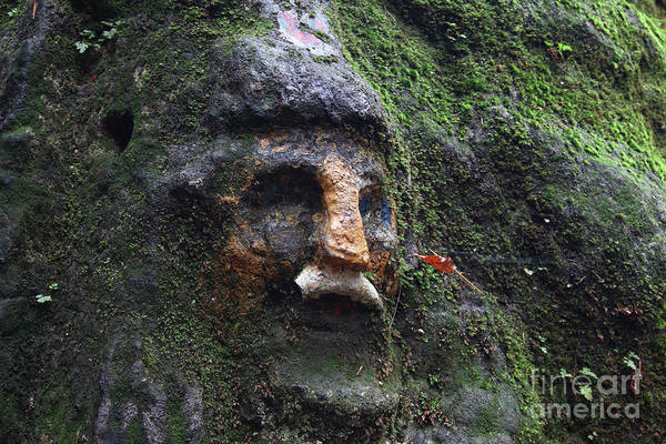 Wall Art - Photograph - Dwarf Face Carved In The Rock by Michal Boubin