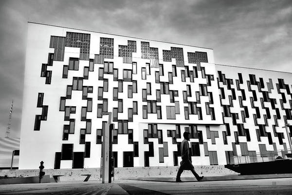Photograph - Dynamic Patterns Pinos University Vienna by Menega Sabidussi