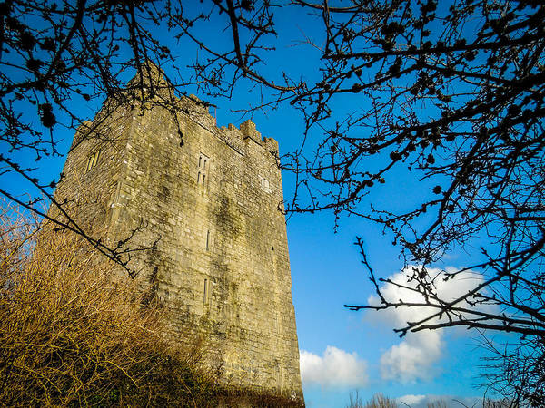 Photograph - Dysert O'dea Castle Framed In Tree Branches by James Truett