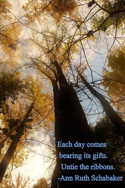 Photograph - Each Day by Buddy Scott