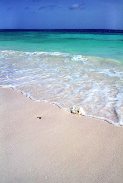 Photograph - Eagle Beach by Thomas R Fletcher