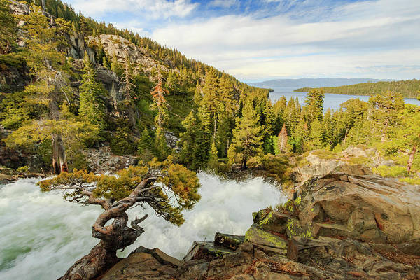 Lightroom Photograph - Eagle Bonsai's Inspirational Flow Into Lake Tahoe by Mike Herron