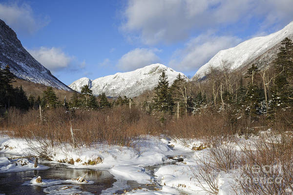 Photograph - Eagle Cliff - Franconia Notch State Park New Hampshire by Erin Paul Donovan