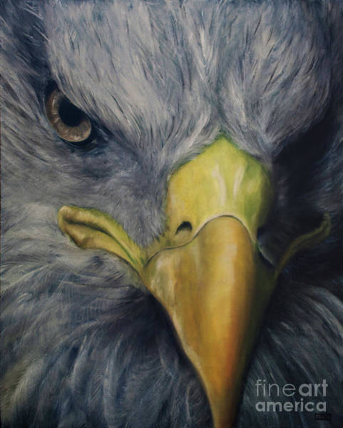 Wall Art - Painting - Eagle Eye- Stare Of The Eagle by Julie Bond