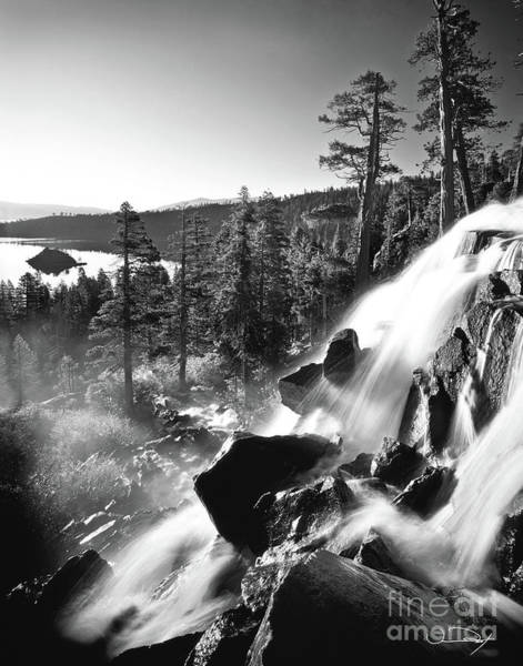 Wall Art - Photograph - Eagle Falls Black And White 1 by Vance Fox