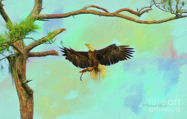 Painting - Eagle Grace by Deborah Benoit