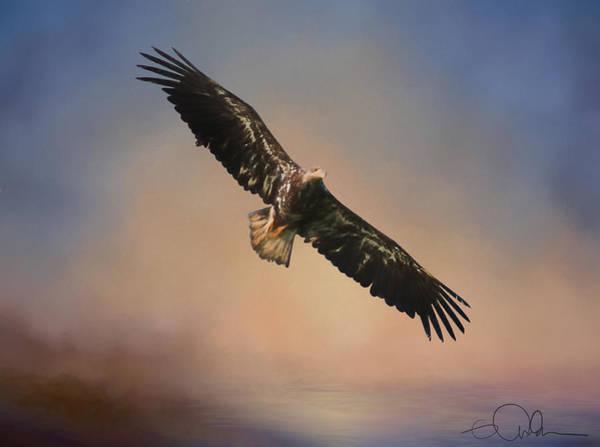 Digital Art - Eagle In The Sky Art by Gloria Anderson