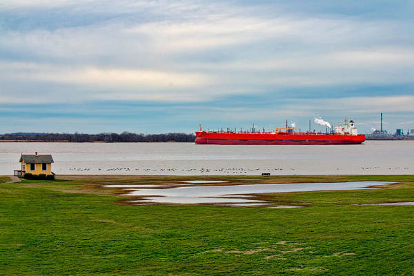 Photograph - Eagle Klang - Oil Freighter by Kristia Adams