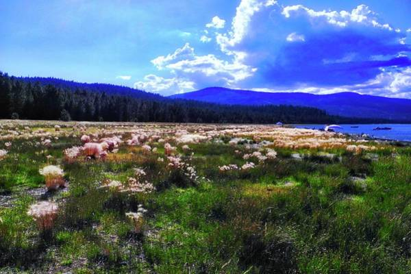 Wall Art - Photograph - Eagle Lake Afternoon by Kirsten Giving