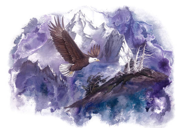 Painting - Eagle Majesty by Sherry Shipley