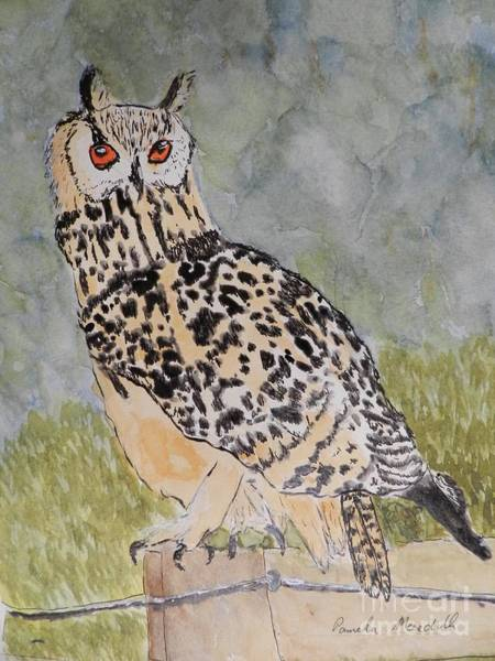 Wall Art - Painting - Eagle Owl by Pamela Meredith