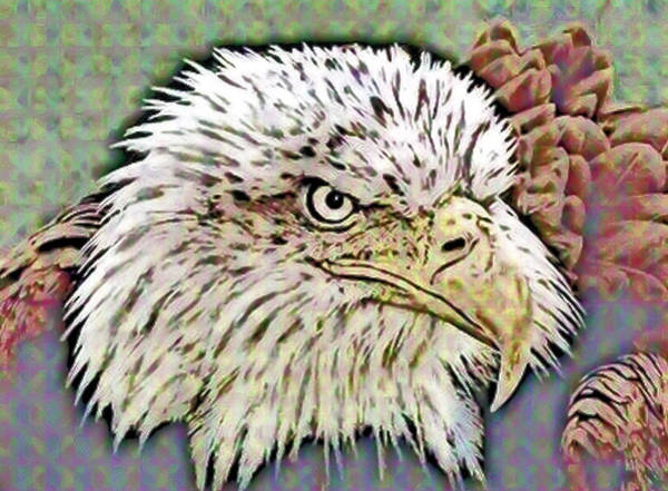 Mixed Media - Eagle by Patricia Griffin
