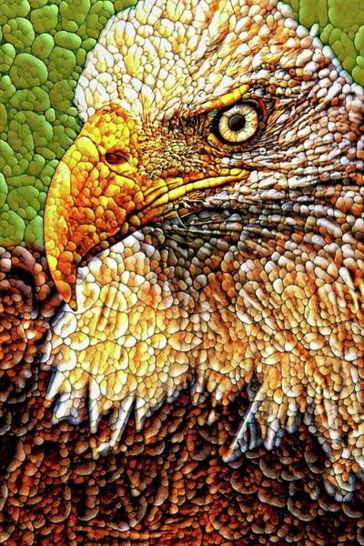 Photograph - Eagle Quilted Abstract by Alice Gipson
