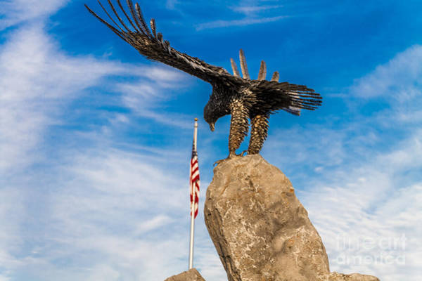 Photograph - Eagle Salute by William Norton