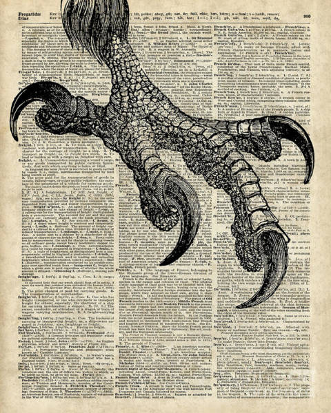 Wall Art - Digital Art - Eagle Talon On Dictionary Page by Anna W