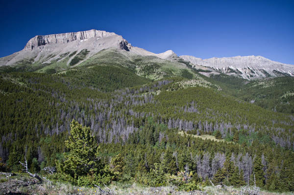 Ear Mountain, Montana Art Print