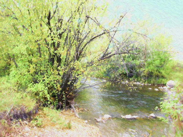 Digital Art - Early Autumn By The Creek by David King