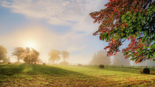 Photograph - Early Autumn Fog by Bill Wakeley