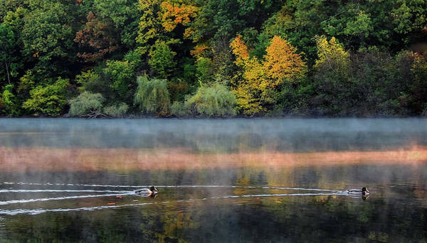 Photograph - Early Autumn Morning At Longfellow Pond by Robert Mitchell
