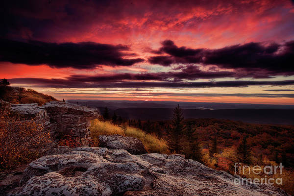 Photograph - Early Day At Bear Rocks Dolly Sods Wv by Dan Friend