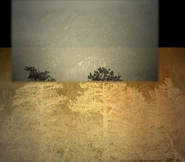 Photograph - Early Elevation  by Mark Ross