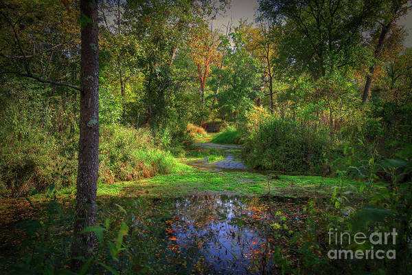 Riverway Photograph - Early Fall At Montauk State Park  by Larry Braun