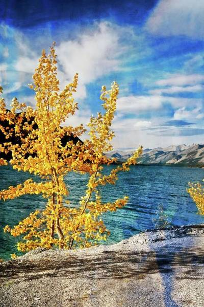 Photograph - Early Fall by Marty Koch