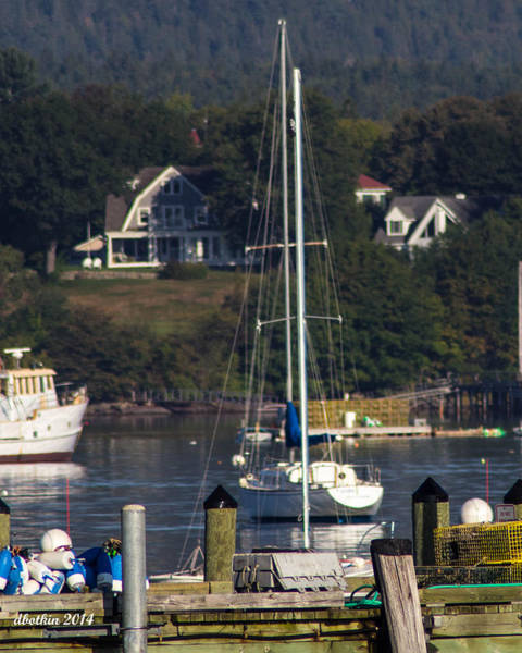 Wall Art - Photograph - Early Fall Sw Harbor by Dick Botkin