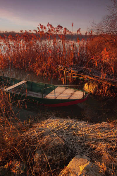 Photograph - Early In The Morning by Davor Zerjav