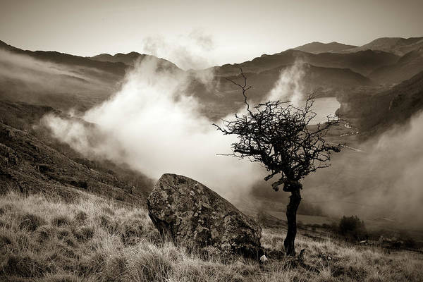 Photograph - Early Mist, Nant Gwynant by Peter OReilly