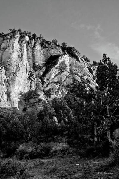 Photograph - Early Morining Zion B-w by Christopher Holmes