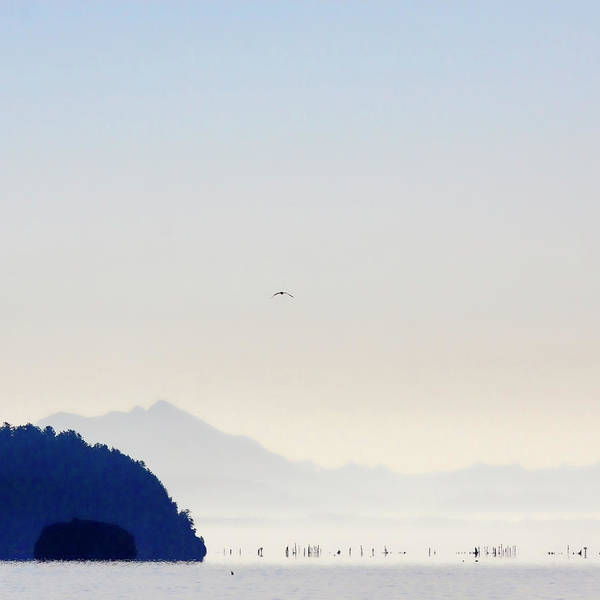 Whidbey Island Wall Art - Photograph - Early Morning Ala Spit Whidbey Island Square Format by Carol Leigh