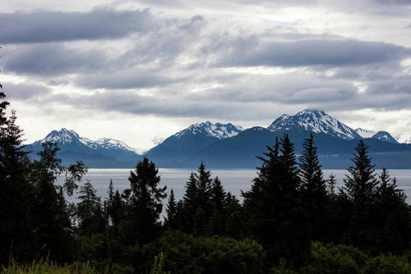 Photograph - Early Morning Alaska by Gloria Anderson