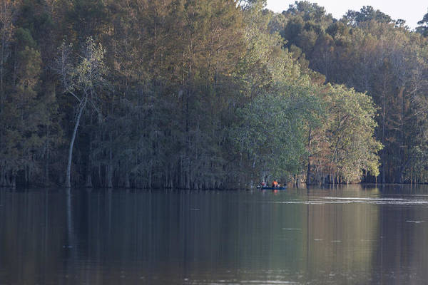 Wall Art - Photograph - Early Morning Cove - Lake Marion by Suzanne Gaff