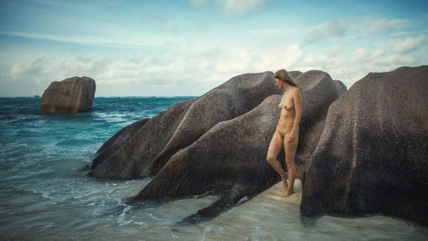 Photograph - Early Morning by Dmitry Laudin