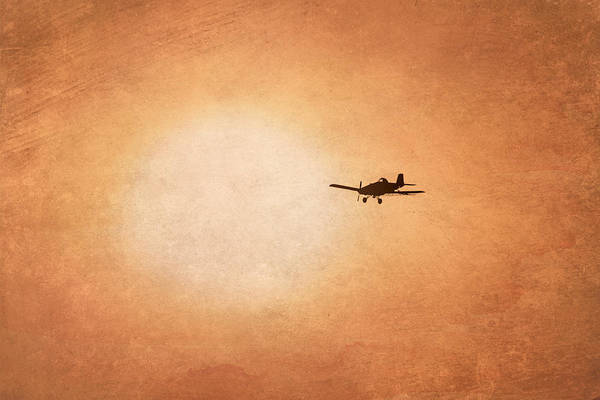 Photograph - Early Morning Flight by Ramona Murdock