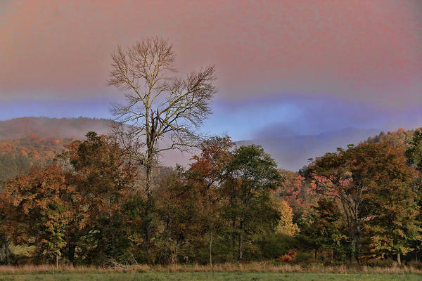 Waitsfield Photograph - Early Morning Fog # 3 by Allen Beatty