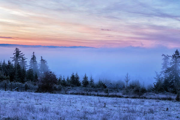 Photograph - Early Morning Fog by Belinda Greb