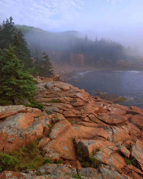 Acadia National Park Photograph - Early Morning Fog  by Stephen  Vecchiotti