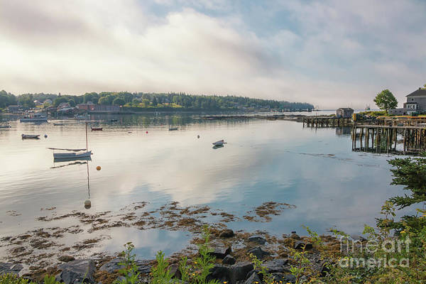 Swan Boats Photograph - Early Morning In Bernard Maine by Elizabeth Dow