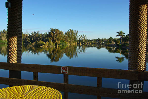 Wall Art - Photograph - Early Morning In Lakes Park Fort Myers  by Zal Latzkovich