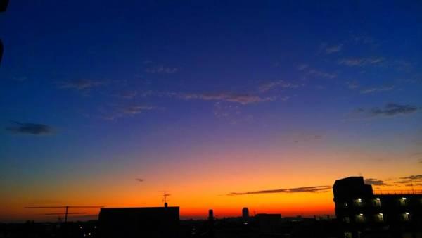 Digital Art - Early Morning by Kumiko Izumi