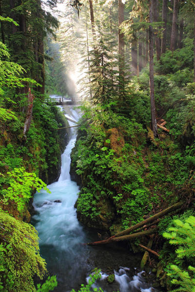 Photograph - Early Morning Light At Sol Duc Waterfall In Olympic National Park by Pierre Leclerc Photography
